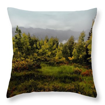 Throw Pillow featuring the photograph Early Fall On Kebler Pass by Ellen Heaverlo
