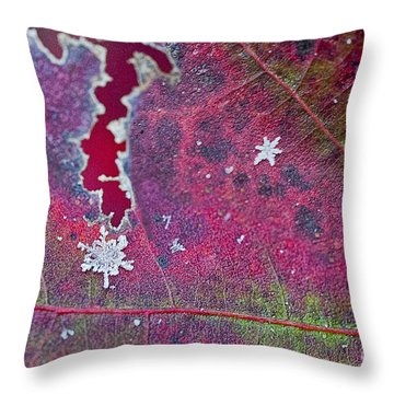 Early Fall Snow Flakes Throw Pillow by Dan Friend