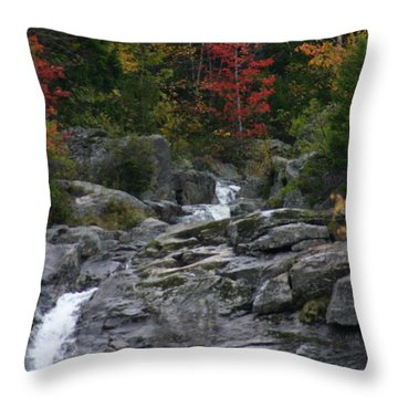 Early Fall Waterfall Throw Pillow by Denyse Duhaime