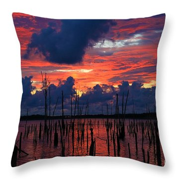Early Light Throw Pillow