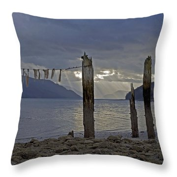 Early Morning Throw Pillow by Cathy Mahnke