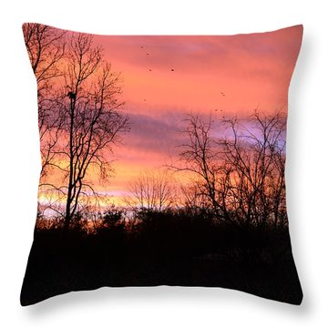 Early Morning Color Canvass Throw Pillow
