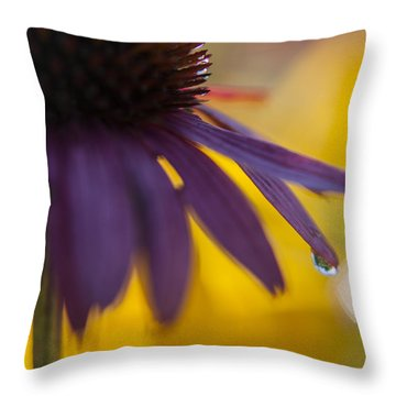 Early Morning Dew Drops Throw Pillow