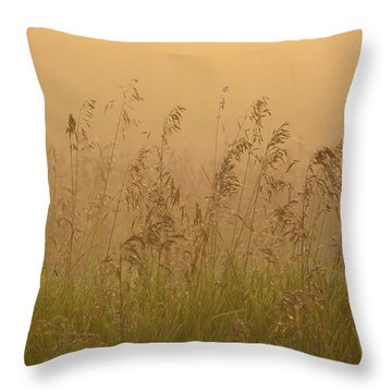 Early Morning Field Throw Pillow