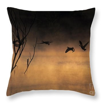 Early Morning Flight Throw Pillow