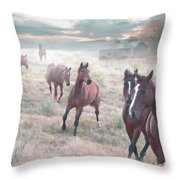 Early Morning Fog Throw Pillow by Bill Stephens