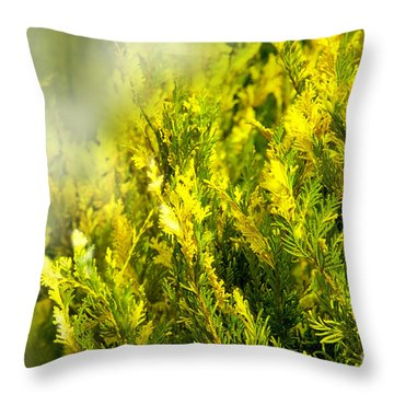 Early Morning Fog Throw Pillow by Lena Wilhite