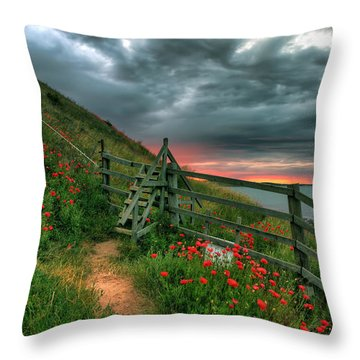 Early Morning Glow Throw Pillow