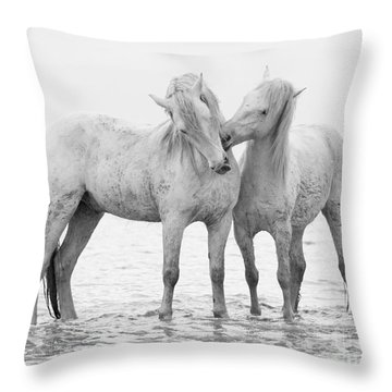 Early Morning Horse Play Throw Pillow