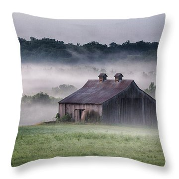 Early Morning In The Mist Standard Throw Pillow