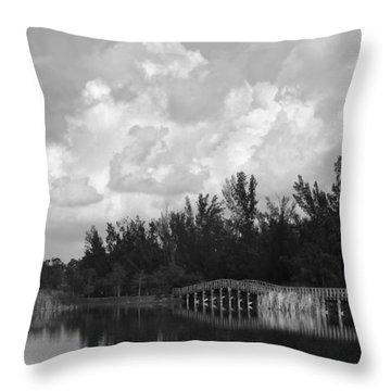 Early Morning Throw Pillow by Kim Hojnacki