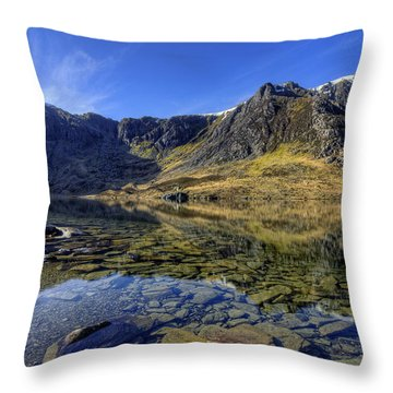 Early Morning Lake Throw Pillow