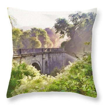 Early Morning Mist Throw Pillow