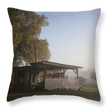 Throw Pillow featuring the photograph Early Morning On The Farm by Lynn Palmer