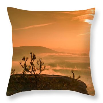 Early Morning On The Lilienstein Throw Pillow