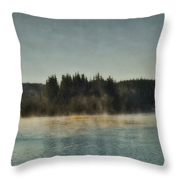 Early Morning Throw Pillow by Priska Wettstein