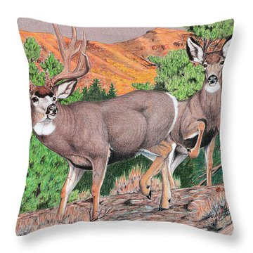Early Morning Retreat Throw Pillow