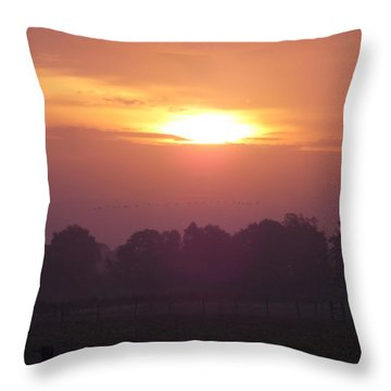 Throw Pillow featuring the photograph Early Morning Risers by John Glass