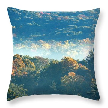 Throw Pillow featuring the photograph Early Morning by Steven Huszar