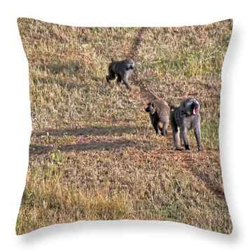 Early Morning Stroll Throw Pillow