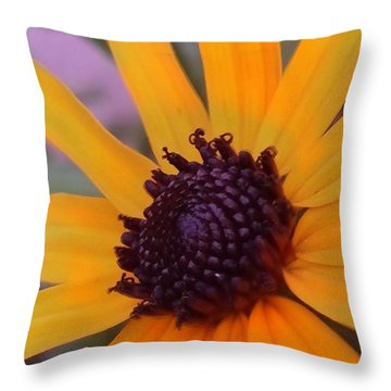 Early Morning Susan Throw Pillow