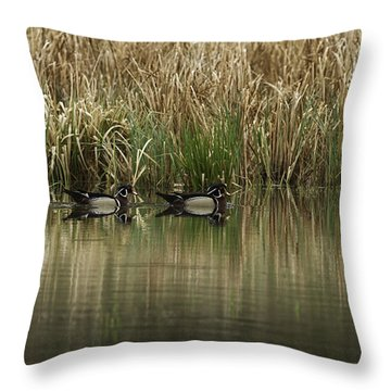Early Morning Wood Ducks Throw Pillow