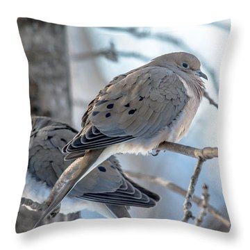 Early Mourning Throw Pillow by Cheryl Baxter