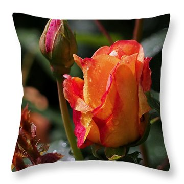Early Roses Throw Pillow by Rona Black