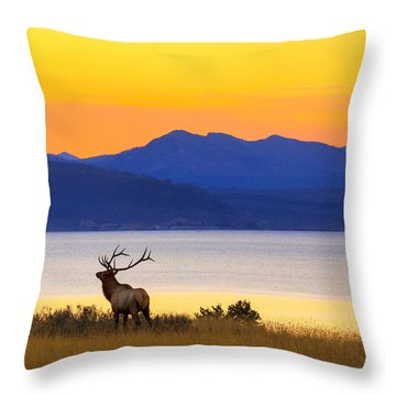 Early Singer Throw Pillow