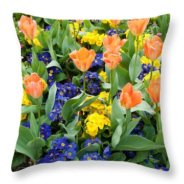 Early Spring Throw Pillow by Geraldine Alexander