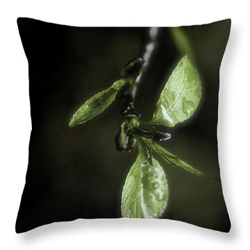 Early Spring Leaves Throw Pillow by Jill Smith