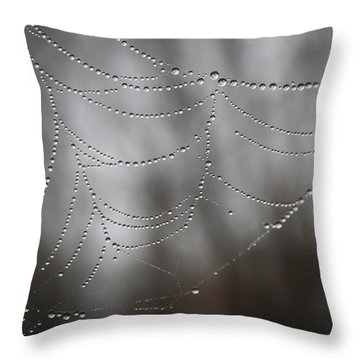 Throw Pillow featuring the photograph Early Spring Morning by Glenn DiPaola