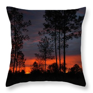 Throw Pillow featuring the photograph Early Sunrise by Donald Williams