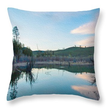 Early Sunset On A Beaver Pond  Throw Pillow by Omaste Witkowski