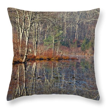 Early Winter Reflects Throw Pillow by Karol Livote
