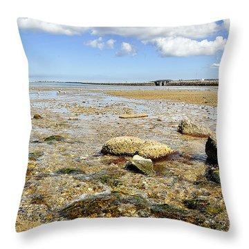 Earth And Sea Throw Pillow