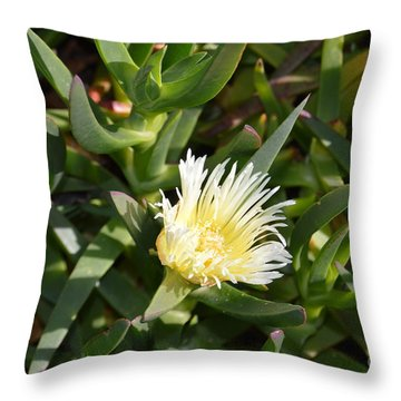Earth Music Throw Pillow