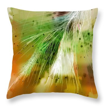 Earth Silk Throw Pillow