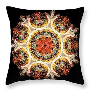 Earthmind II Throw Pillow by Lisa Lipsett