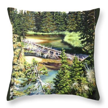 East Rosebud Inlet Stream Throw Pillow by Patti Gordon