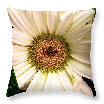 Easter 2014-2 Throw Pillow