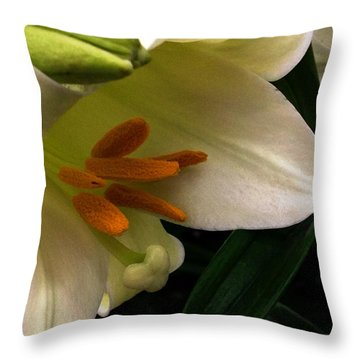 Easter 2014-4 Throw Pillow