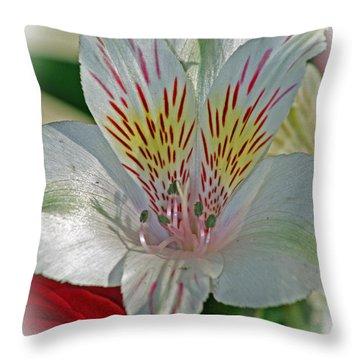 Easter Lily Throw Pillow by Karen Adams