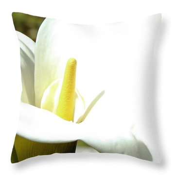 Easter Lily Throw Pillow by Pamela Patch