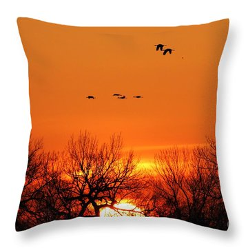 Easter Sunrise Throw Pillow by Elizabeth Winter