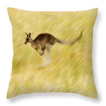 Eastern Grey Kangaroo Hopping Throw Pillow