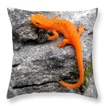 Orange Julius The Eastern Newt Throw Pillow