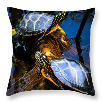 Eastern Painted Turtles Throw Pillow by Bob Orsillo
