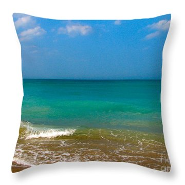Eastern Shore 2 Throw Pillow