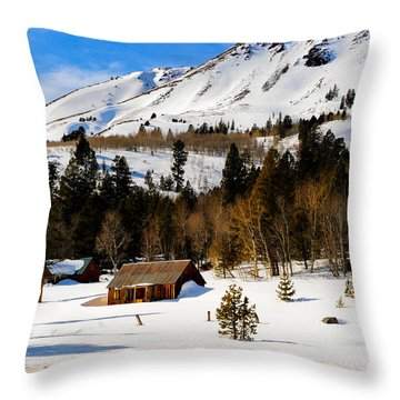 Eastern Slope Cabin Throw Pillow by Donald Fink